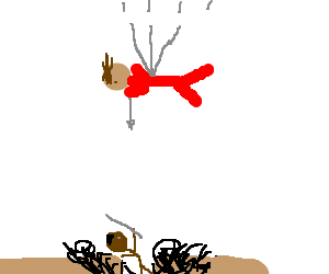 Muffdiver v.s. skydiver