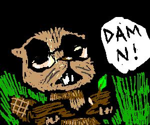 King beaver w/ glasses says DAMN