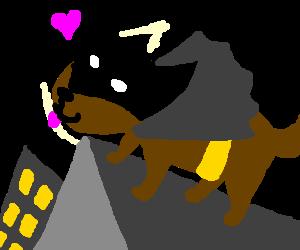 Happy Batdog