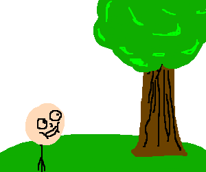 Child awkwardly stares at tree