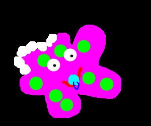 ameba babies