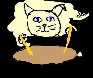 Cat doing a bit of drumming~