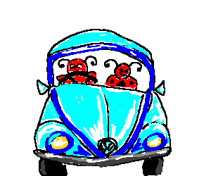 Bugs driving a VW bug