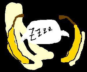 A pair of sleeping bananas