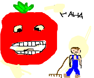 tomato laughs at poor garden upkeep