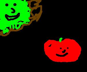 Moss meets tomato