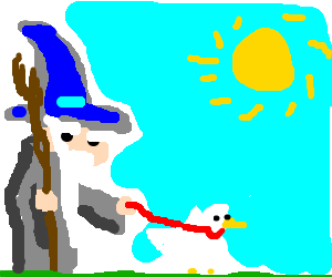 Gandalf walks his pet duck on a sunny day