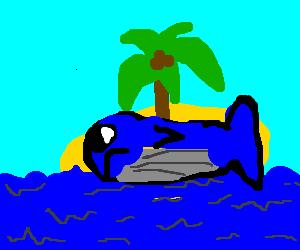 Beached whale on tropical island
