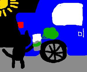 cat spraying green stuff on blue car