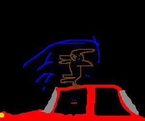 Dog does backflips atop car