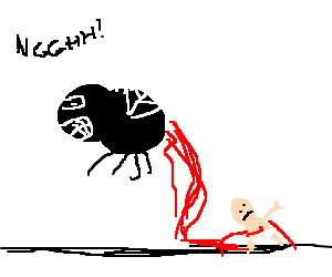 Fly giving birth to a Human