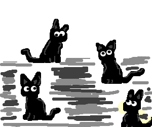 Four black cats that look exactly the same
