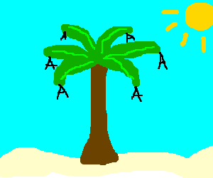 Palm tree grows 'A's