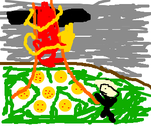 shenron is summoned