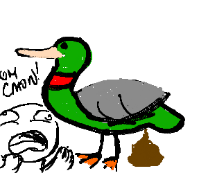 What is it with you guys and excrementing ducks?