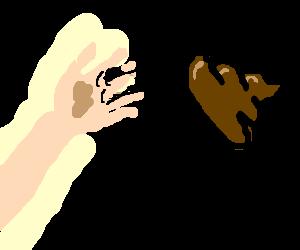 throw shit