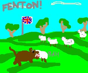 Fenton has run off again, FENTON!!!