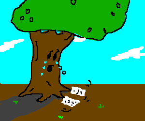 A sobbing tree get his affairs in order