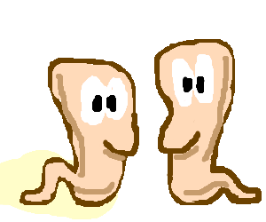 Worms standing up