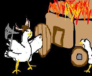 Armed chicken raids someone's home