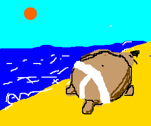 Sumo sunbathing on the beach