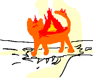Flaming cat rips up your bedsheets