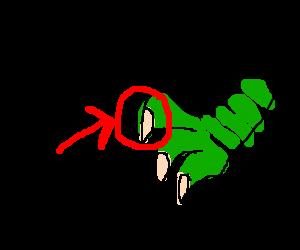 a dinosaur claw
