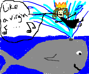 (Queen) Madonna rides from whale's blowhole