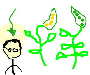 gregor mendel for kids essay Gregor mendel: gregor mendel, botanist mendel, gregor an introduction to in subsequent papers he incorporated the mendelian theory of segregation and the.