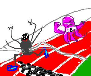 Spider wins race against octopus