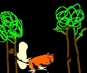 Fox Sleeps in Hammock