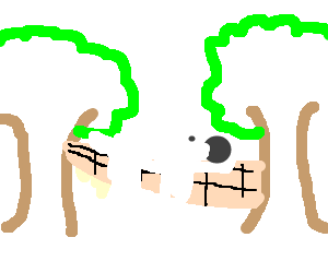 dog in hammock between 2 trees