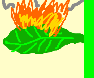 Green leaf on fire.