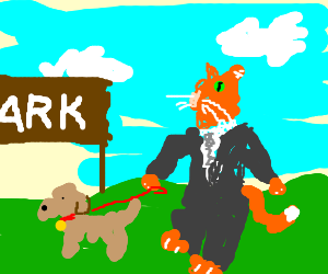 suited cat walks in park with leash dog