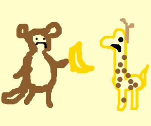 A sad monkey gives sad giraffe a banana