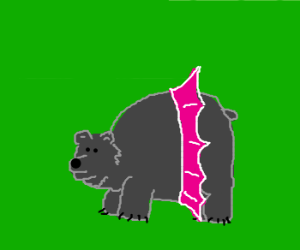 Grizzly bear with tutu