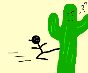 ninja highkicks confused cactus