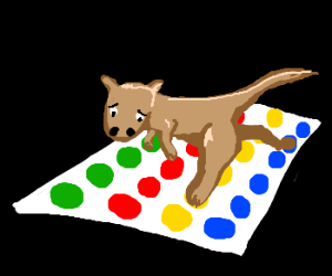 Kangaroo plays Twister all alone