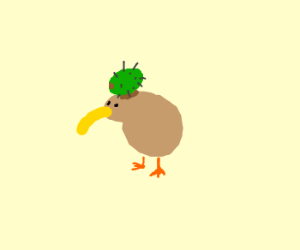 Kiwi bird with a kiwi fruit on its head