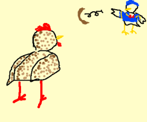 Chicken sees boomerang thrown by a duck