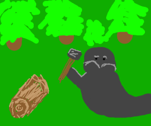 walrus hammers a log