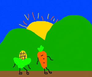 Corn & carrot walk into sunset