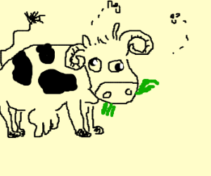 cow with goat horns, eating grass.