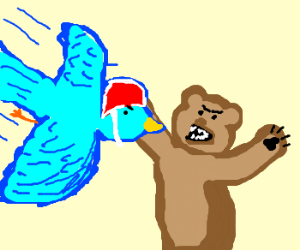 Blue bird divebombs bear