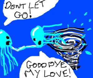 jelly fish in love sucked into vortex