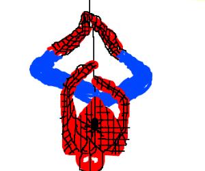 classy spiderman upside down drawception