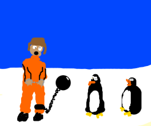 Man reluctantly returns to south pole