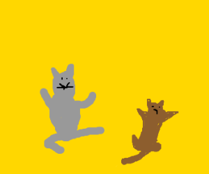 kittens rolling about drawception