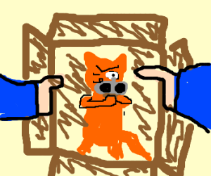 Shrodinger's Cat extracts revenge on us!