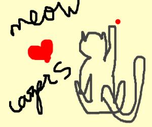 Kitty loves red lazer